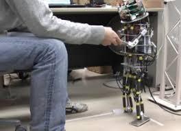 「中枢性パターン発生器」の画像検索結果