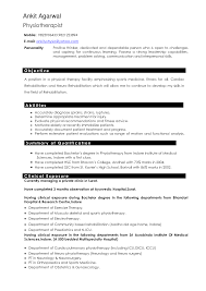 how to write the summary of a resume  kakuna resume you  ve got it  easy writing professional for essay and resume