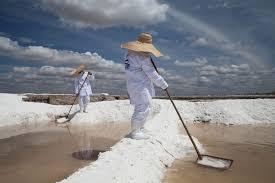 Resultado de imagen de historia de la sal