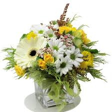 Florist West Auckland   Same Day <b>Flower</b> Delivery Auckland