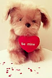 Image result for Cute valentines day animals images