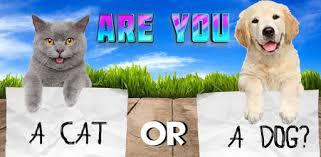 Test what cat or <b>dog am</b> I? Animal simulator - Apps on Google Play