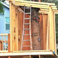 Ultimate Tree House Plans Plans DIY Free Download planter      ultimate tree house plans