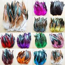 Wholesale <b>50pcs lot</b> high quality <b>rooster tail</b> feather 6-8inch 15 ...