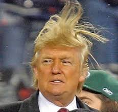Image result for image of donald trump being attacked