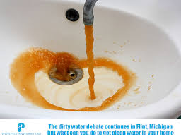 Image result for flint water
