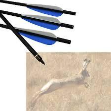 """16"""" Archery Roll Fiberglass <b>Crossbow Bolts</b> Target Hunting Blue ..."""