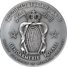 """Résultat de recherche d'images pour """"logo Gendarmería Real Marroquí"""""""