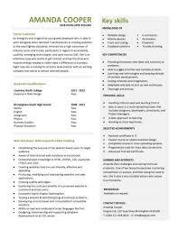 it cv template  cv library  technology job description  java cv    entry level web developer resume template