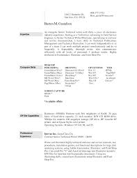 easy build professional resume   essay and resume    sample resume  build professional resume with expertise computer skill for your job   easy