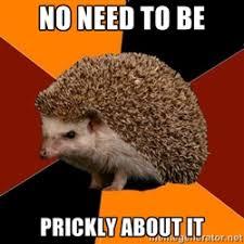 Haunt Hedgehog | Meme Generator via Relatably.com