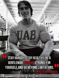 Arnold Schwarzenegger on Pinterest | Phil Heath, Bodybuilding ...