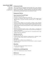 business sample resumes   svixe don    t live a little  live a resumebusiness analyst resume sample professional profile