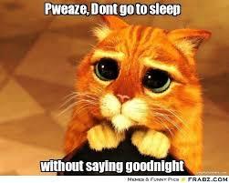 Pweaze, Dont go to sleep... - Beggin' Cat Meme Generator Captionator via Relatably.com