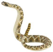 <b>Фигурка Papo Гремучая</b> змея 50237 — купить по выгодной цене ...