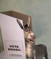 Resultado de imagem para idiota votando