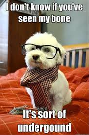 Ah! Those cute glasses and jaunty little scarf are doing things to ... via Relatably.com