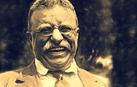 theodore roosevelt the bully pulpit teddy roosevelt ldquo