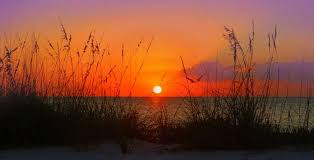 Image result for best pictures of sunsets at the beach Sarasota