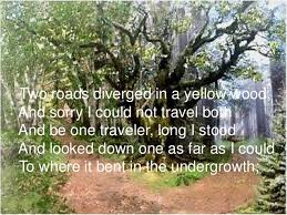 what does undergrowth mean in the road not taken essay   homework  what does undergrowth mean in the road not taken essay   image
