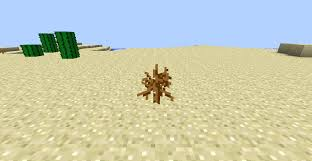 Image result for brown plant desert minecraft