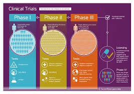 Alzheimer's Research UK's infographic about the different phases ...