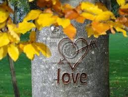 A bientôt mon Amour Images?q=tbn:ANd9GcSk457yImRw4pAFCkLPf3HKW6nM4z9rGfTxAw4lzAbktapc14vYww