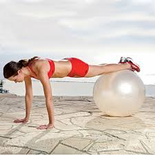 Image result for stability ball plank