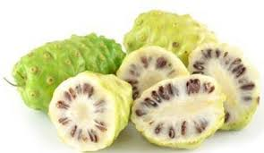 Hasil gambar untuk khasiat buah mengkudu