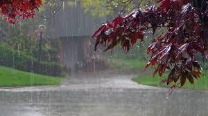 Αποτέλεσμα εικόνας για βροχές καταιγίδες