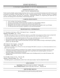 sample us government resume cipanewsletter cover letter example of federal government resume example of a