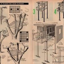 Excellent Plans For Tree Houses With How To Build A Tree House    Cool plans for tree houses and treehouse plans and designs tree house plans professional style