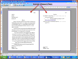 a term paper example  a term paper example