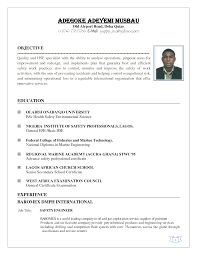 example of resume name   cover letter builderexample of resume name banking resume example resume and cover letter examples cv template petroleum engineering