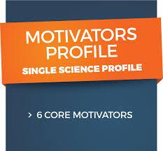 introduction vargo lewis career consultants workplace motivators values
