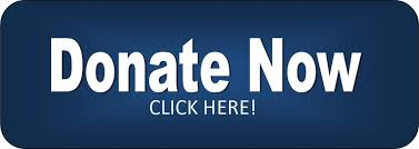 Image result for small donate button