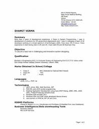 resume templates really good examples pertaining to  93 awesome best resume layouts templates