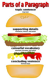 write a paragraph live learn parts of a paragraph illustrated as parts of a hamburger the supporting details as