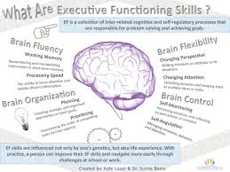 what are executive functioning skills dana cope consulting brain development is subject to significant individual variation which is why some students struggle more executive functioning skills than others