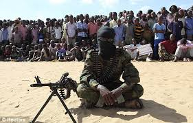 Image result for 300 somali terrorists in us