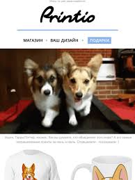 <b>Printio</b>.ru - дизайн и печать Email Newsletters: Shop Sales ...