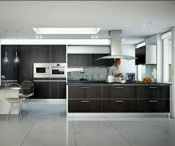 designing kitchen brilliant small design