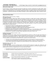 s consultant resume