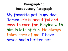 how to write an essay choose a topic make a mind mapping make a  paragraph  introductory paragraph my favorite pet is my dog romeo he is