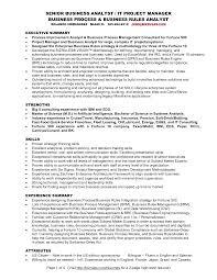 senior business analyst resume professional resume template