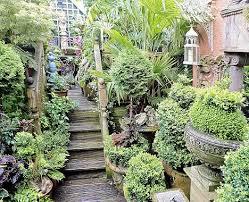 Small Picture Plants For Small Gardens Uk CoriMatt Garden