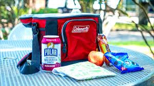 The Best Lunch Coolers and <b>Lunch Bags</b> of 2019 - Reviewed ...