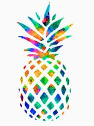 <b>Colorful Pineapple</b> T-Shirts | Redbubble