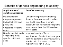 gm food benefits essay help   essay for yougenetic engineering benefits essay help