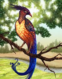 Image result for firebird animal